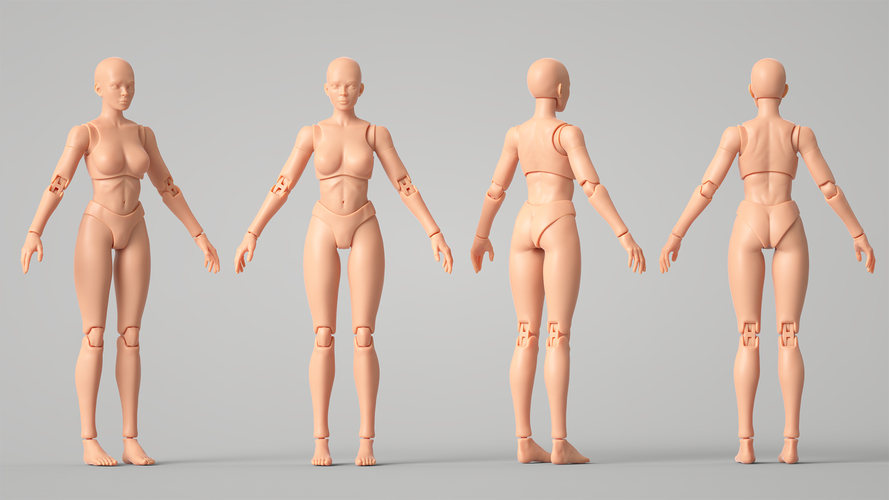 Articulated Poseable Female Figure 3D Print 247434