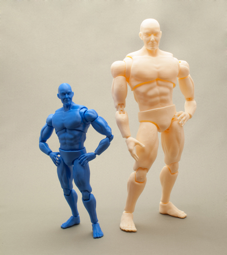 Articulated Poseable Male Figure 3D Print 247438
