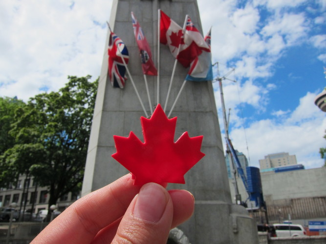Maple Leaf - Canada Day! 3D Print 24802