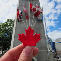 Small Maple Leaf - Canada Day! 3D Printing 24802