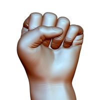 Small Fist hand gesture male knuckle 3D Printing 248593