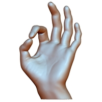 Small Ok okay sign hand male 3D Printing 248631