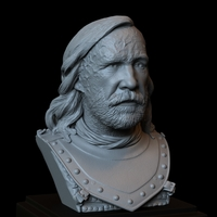 Small Sandor Clegane aka The Hound #GameOfThrones bust portrait  3D Printing 249593