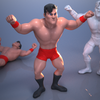 Small Multi-part Wrestling Action Figure 3D Printing 249752