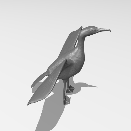 Great Cormorant 3D Print 249899