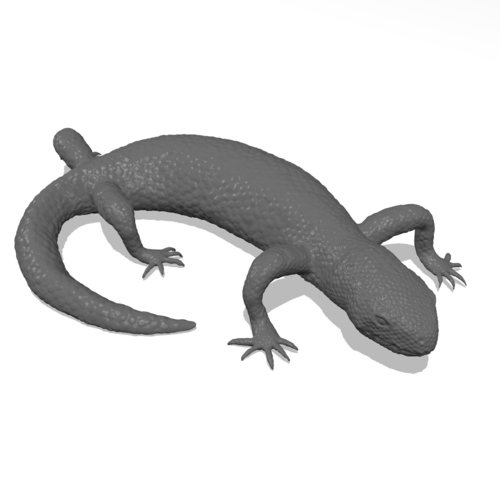Mexican Beaded Lizard(Heloderma Horridum) 3D Print 249917