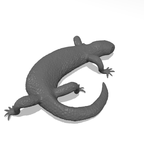 Mexican Beaded Lizard(Heloderma Horridum) 3D Print 249919