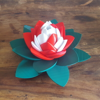 Small Lotus Puzzle 3D Printing 249943