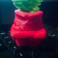 Small Inside Out Anger Planter 3D Printing 25026