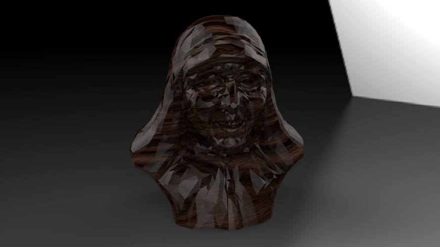 Mother Theresa 3D Print 25037