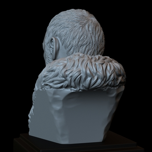 Davos Seaworth #GameOfThrones Portrait, Bust, 200mm 3D Print 254348