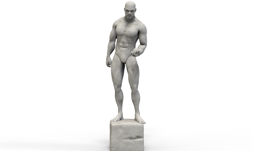 The Man Sculpture 3D Print 254421