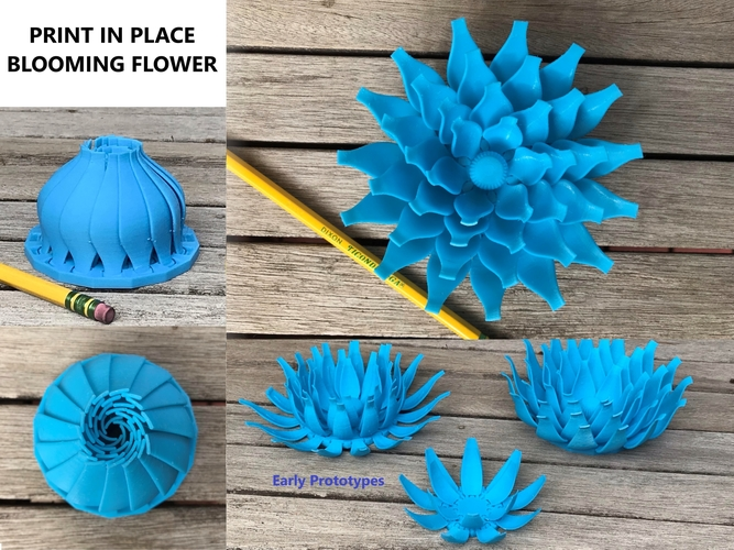 Print in place blooming flower 3D Print 256235