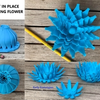 Small Print in place blooming flower 3D Printing 256235