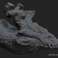 Small Dragon Head A 3D Printing 25626