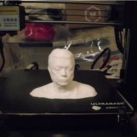 Small Bust print of myself  from 3d scan 3D Printing 256928
