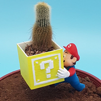Small Mario Garden Helper 3D Printing 257445