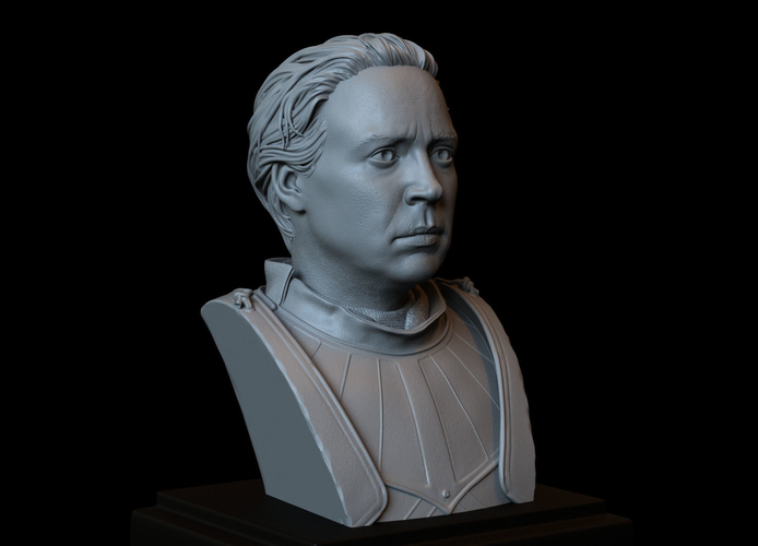 Brienne of Tarth from Game of Thrones, bust, 200mm 3D Print 258479