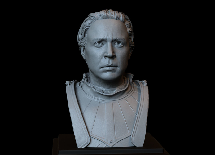 Brienne of Tarth from Game of Thrones, bust, 200mm 3D Print 258480