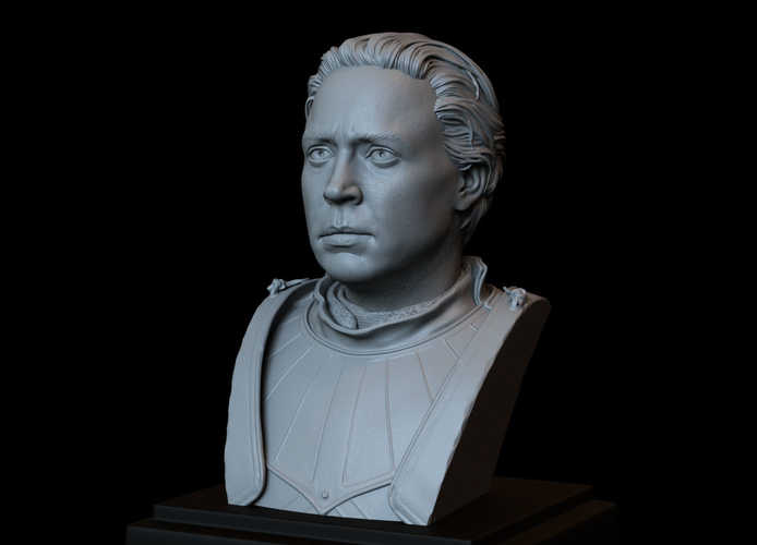 Brienne of Tarth from Game of Thrones, bust, 200mm 3D Print 258481
