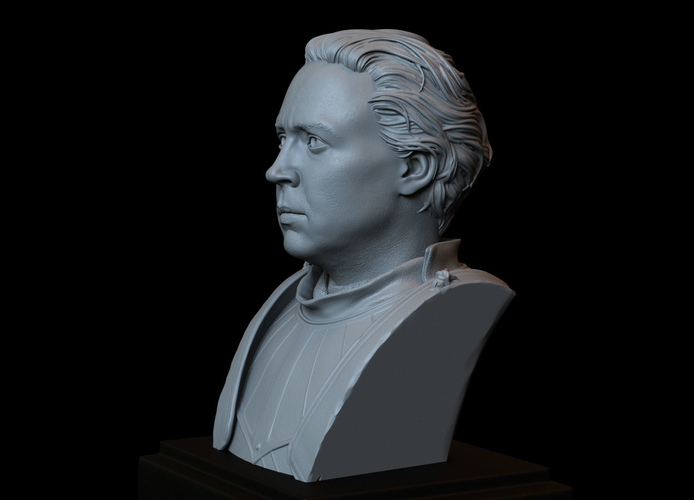 Brienne of Tarth from Game of Thrones, bust, 200mm 3D Print 258482
