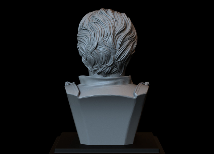 Brienne of Tarth from Game of Thrones, bust, 200mm 3D Print 258483