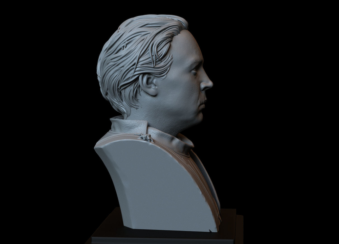 Brienne of Tarth from Game of Thrones, bust, 200mm 3D Print 258484