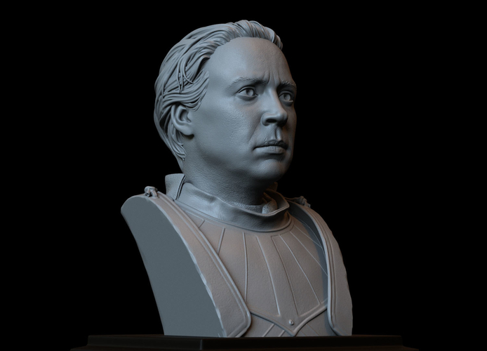 Brienne of Tarth from Game of Thrones, bust, 200mm 3D Print 258485