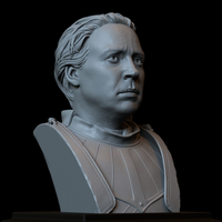 Small Brienne of Tarth from Game of Thrones, bust, 200mm 3D Printing 258485