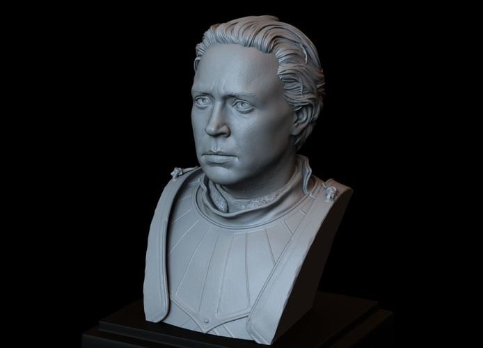 Brienne of Tarth from Game of Thrones, bust, 200mm 3D Print 258486