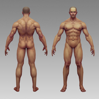 Small  Physique Pictorial  3D Printing 259133
