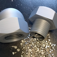 Small Cap Nut Container 3D Printing 263083