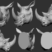 Small Rhino Head 3D Printing 263294