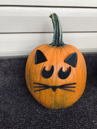 Mr. Pumpkin Head/Halloween Cat Pumpkin Face/Kids Halloween Craft 3D Print 264962