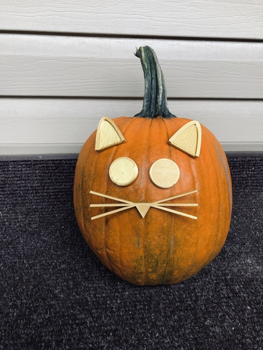 Mr. Pumpkin Head/Halloween Cat Pumpkin Face/Kids Halloween Craft 3D Print 264964