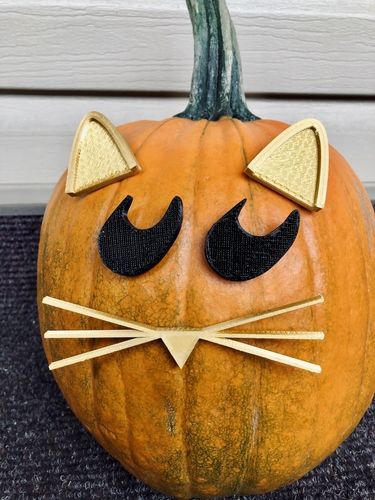 Mr. Pumpkin Head/Halloween Cat Pumpkin Face/Kids Halloween Craft 3D Print 264966
