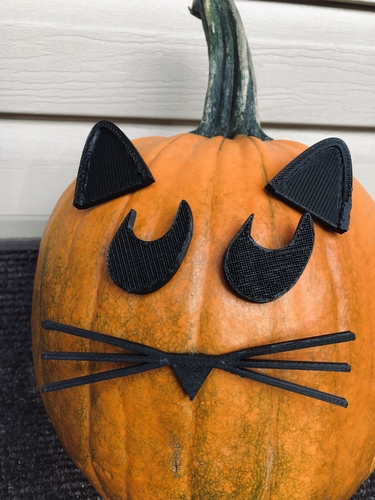 Mr. Pumpkin Head/Halloween Cat Pumpkin Face/Kids Halloween Craft 3D Print 264967