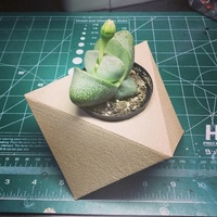 Small Geometric Planter 3D Printing 26576