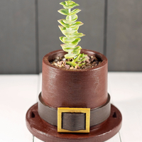 Small Pilgrim Hat Planter 3D Printing 266549