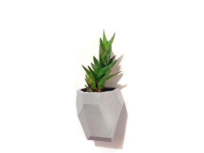 Faceted Modular Wall Planter 3D Print 26750