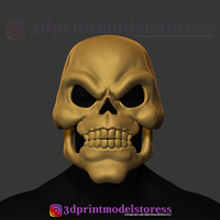 Small Skeletor Mask 1980 He-Man Costume Cosplay Helmet 3D Print Model 3D Printing 270417