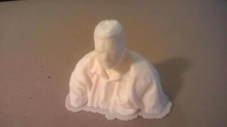 My Skanect Scan of Moi 3D Print 27083