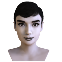 Small Audrey Hepburn black and white bust for full color 3D printing 3D Printing 272830