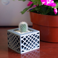 Small Star Spectrum Planter 3D Printing 275234