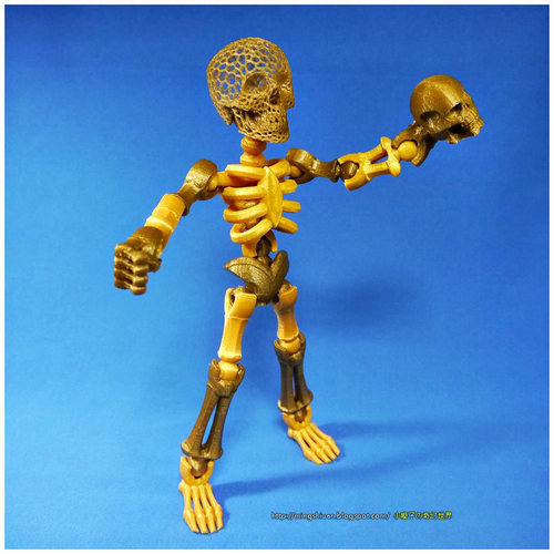 Tinkerplay Skeleton 3D Print 27589