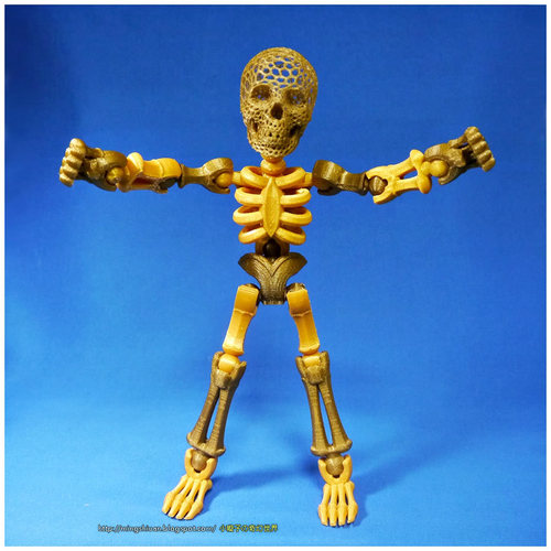 Tinkerplay Skeleton 3D Print 27590