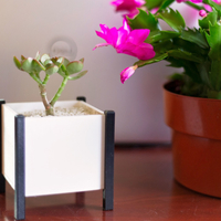 Small Modern Square Planter Box 3D Printing 276351