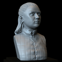 Small Arya Stark (Maisie Williams) from Game of Thrones 3D Printing 279707