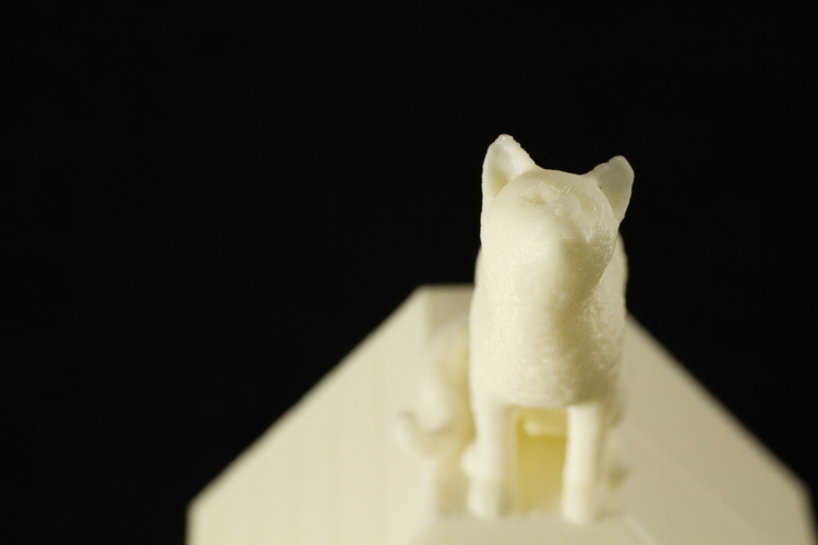 Cat on a Ring Box 3D Print 28050