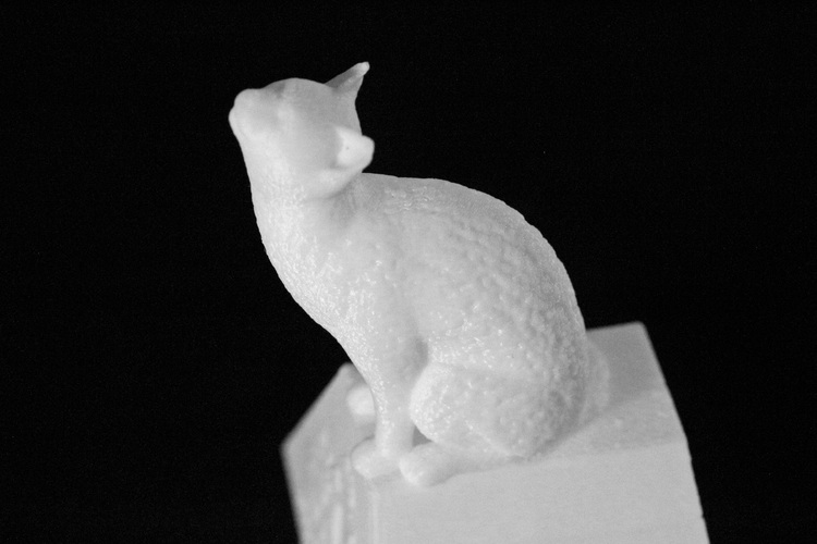 Cat on a Ring Box 3D Print 28052